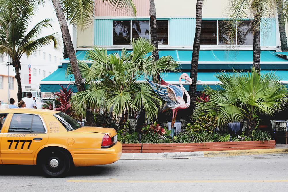 El arte de Miami